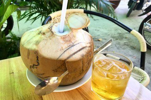 Vietnamese Coconut Water Juice Delicious Vietnam